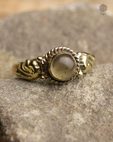 Ring Lichen | Labradorit