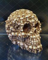 Schädel | Skull Bones - knochenweiß